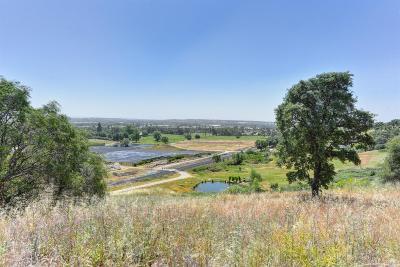 Loomis Residential Lots & Land For Sale: Delmar Avenue