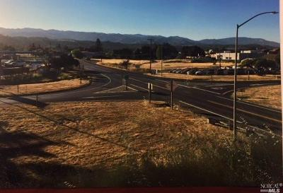 Ukiah Residential Lots & Land For Sale: 131 West Lake Mendocino Drive