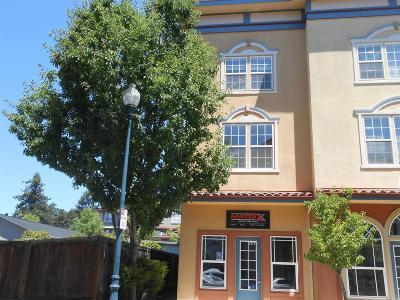 Windsor Condo/Townhouse For Sale: 193 Johnson Street