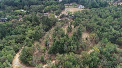 Marin County Residential Lots & Land For Sale: 938 Bolinas Road