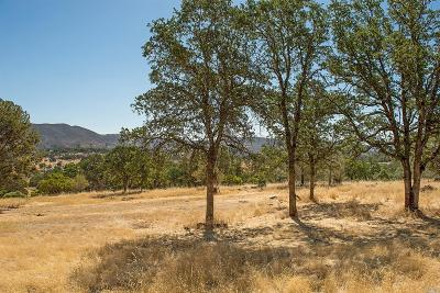 Lake County Residential Lots & Land For Sale: 20924 Jerusalem Grade Road