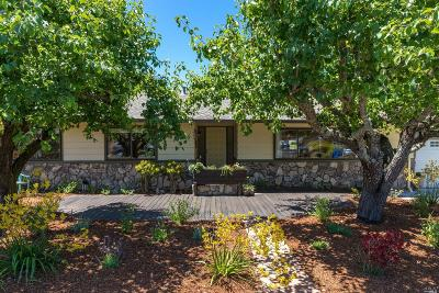 Novato Single Family Home For Sale: 20 Pierce Drive