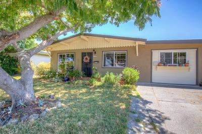 Petaluma Single Family Home For Sale: 1274 McGregor Avenue