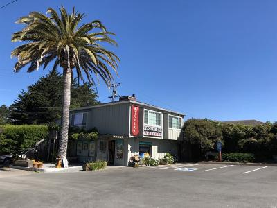 Sonoma County Commercial For Sale: 1785 North Highway 1