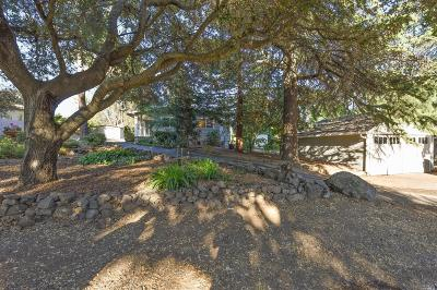 Napa Single Family Home For Sale: 1104 First Avenue