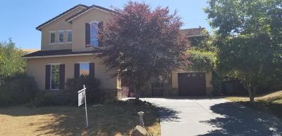 Vallejo Single Family Home For Sale: 1643 Landmark Drive