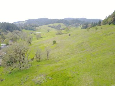 Willits CA Residential Lots & Land For Sale: $995,000