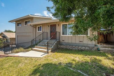 Lakeport Single Family Home For Sale: 765 14th Street