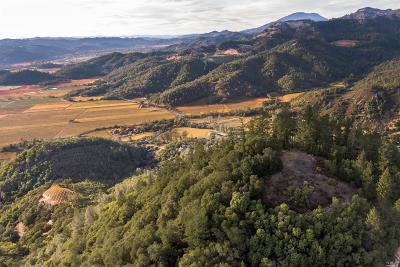 Napa County Residential Lots & Land For Sale: 631 Lommel Road