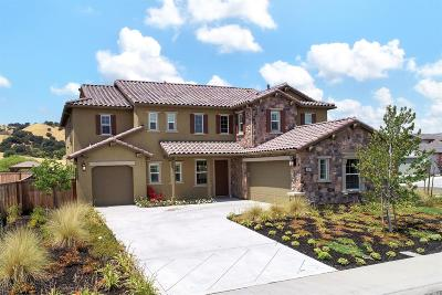 Vacaville Single Family Home For Sale: 1067 Green Leaf Court