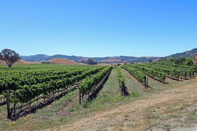 Sonoma County Residential Lots & Land For Sale: 2590 Chileno Valley Road