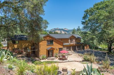 Single Family Home For Sale: 1333 Brush Creek Road