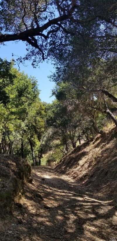 Marin County Residential Lots & Land For Sale: Dominican Dr