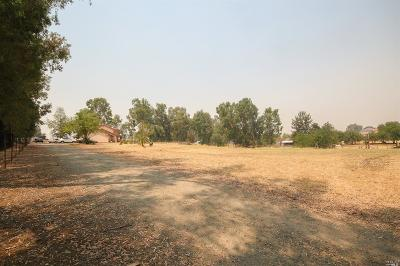 Vacaville Single Family Home For Sale: 190 Rice Lane