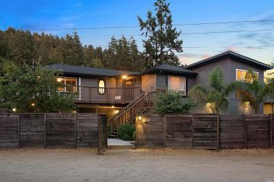 Guerneville Single Family Home For Sale: 17456 Orchard Avenue