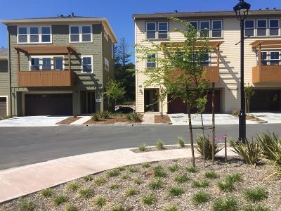 Healdsburg Single Family Home For Sale: 1613 Cali Lane