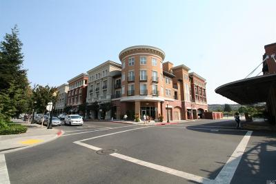 Napa County Condo/Townhouse For Sale: 588 Main Street #308