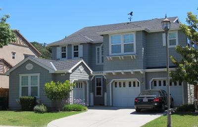 Single Family Home For Sale: 20 Palmer Drive