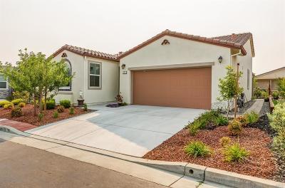 Rio Vista Single Family Home For Sale: 372 Summerset Drive