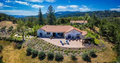 Calistoga Single Family Home For Sale: 270 Franz Valley School Road