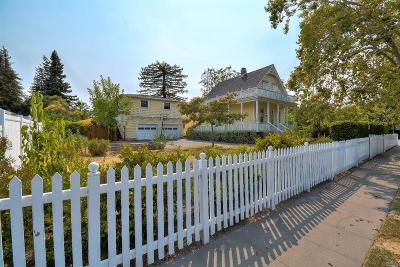 Petaluma Single Family Home For Sale: 700 6th Street