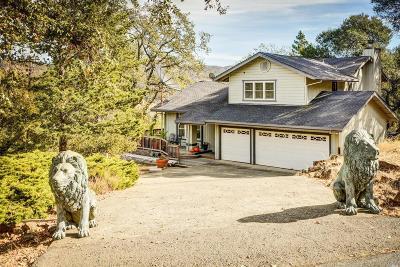 Napa County Single Family Home For Sale: 4 Beechwood Court