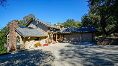 Santa Rosa Single Family Home For Sale: 4705 Woodview Drive