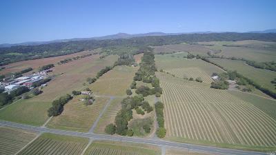 Healdsburg CA Residential Lots & Land For Sale: $5,250,000
