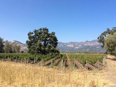 Napa County Residential Lots & Land For Sale: 1200 Tubbs Lane