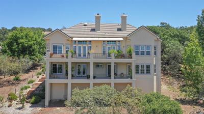 Napa County Single Family Home For Sale: 1143 Castle Oaks Drive