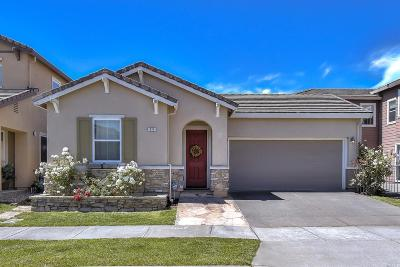 Petaluma Single Family Home For Sale: 971 Hogwarts Circle