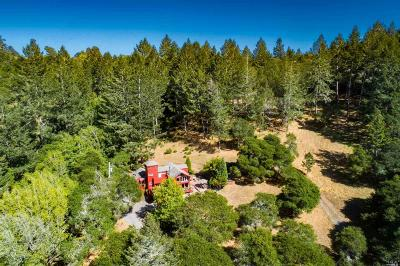 Sebastopol Farm & Ranch For Sale: 1725 Sextonview Lane