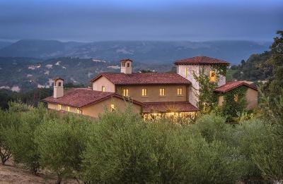 Glen Ellen Single Family Home For Sale: 7755 Sonoma Mountain Road