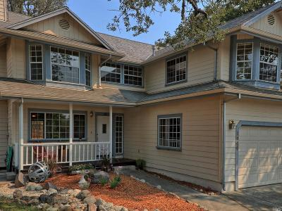 Lakeport Single Family Home For Sale: 1040 Page Drive