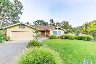 Ukiah Single Family Home For Sale: 1321 Oak Knoll Road