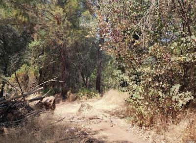 Clearlake Residential Lots & Land For Sale: 14395 Woodland Drive
