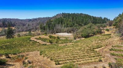 Sonoma County Residential Lots & Land For Sale: 1570 Lawndale Road