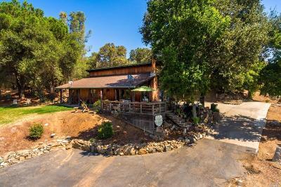 Penryn Single Family Home For Sale: 8411 Rock Springs Road