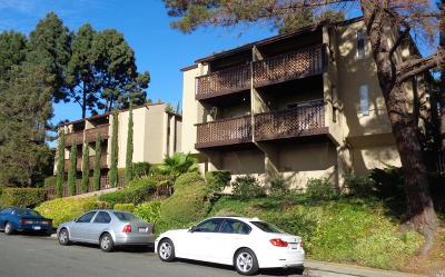 Vallejo Multi Family 5+ For Sale: 138 Kathy Ellen Drive