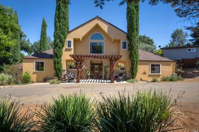 Kelseyville Single Family Home For Sale: 8210 Orchard Drive #Kelse