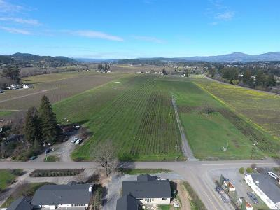 Sonoma County Residential Lots & Land For Sale: 421 West North Street