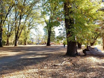 Lakeport Farm & Ranch For Sale: 1370 Scotts Valley Road