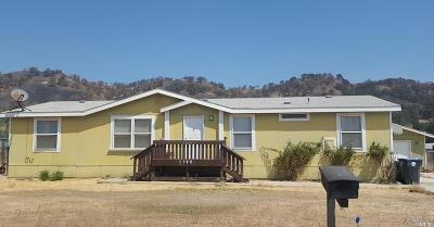 Clearlake Single Family Home For Sale: 3096 Spring Valley Road