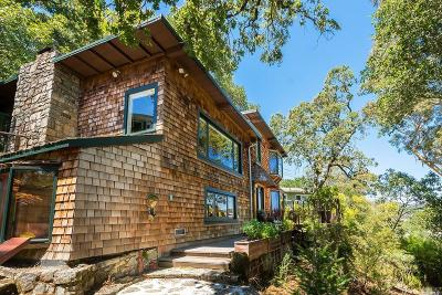 Larkspur Single Family Home For Sale: 3 Hillcrest Avenue