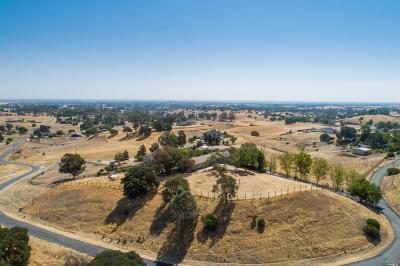 Vacaville Farm & Ranch For Sale: 7810 West Ranch Lane