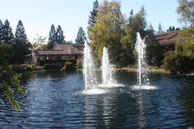 Napa Condo/Townhouse For Sale: 13 Fountain Grove Circle