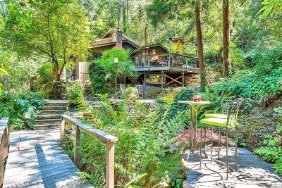 Santa Rosa Single Family Home For Sale: 8508 Saint Helena Road