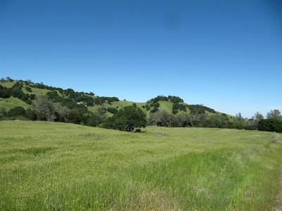 Vacaville Residential Lots & Land For Sale: Carmelita Way