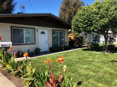 Petaluma Single Family Home For Sale: 442 Stuart Drive