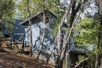 Mill Valley Single Family Home For Sale: 145 Stadium Avenue